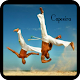 Download Learn capoeira techniques For PC Windows and Mac