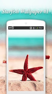 Starfish Wallpapers - náhled