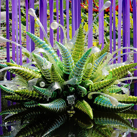 Glass Art by Mary Zugelder - Artistic Objects Glass ( manmade, glass, art, garden, summer, colorful,  )