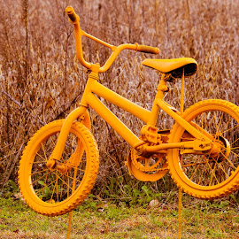 Suspended Memory by Deborah Lucia - Artistic Objects Still Life ( field, bike, yellow )