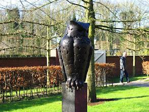 Photo: #024-Le parc floral du Keukenhof.