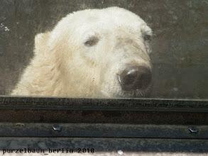 Photo: Knuts Blick durch die Besucherscheibe :-)