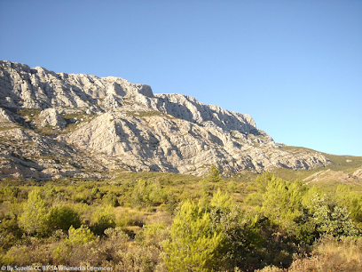 Permian and Mesozoic environments in southern France