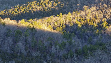 Photo: Valley of the South Prong of Middle Creek