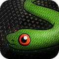 Snake Cover for Super Slither io