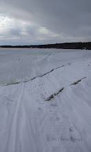 Photo: Snowmobiles and ATV's ride along the shoreline. Here's where their tracks go from the shore onto the ice.