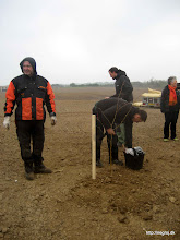 Photo: De professionelle retter liiige træplantningen