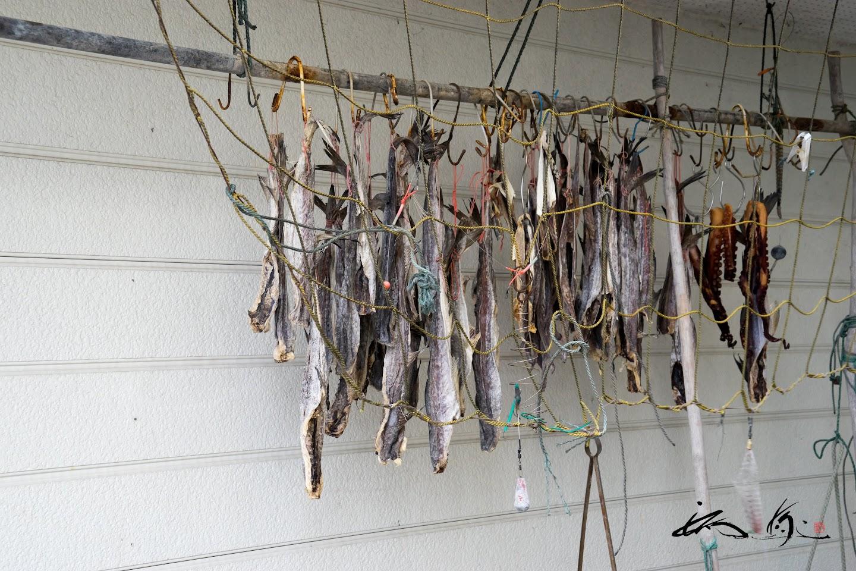 竿に吊るされた魚干し