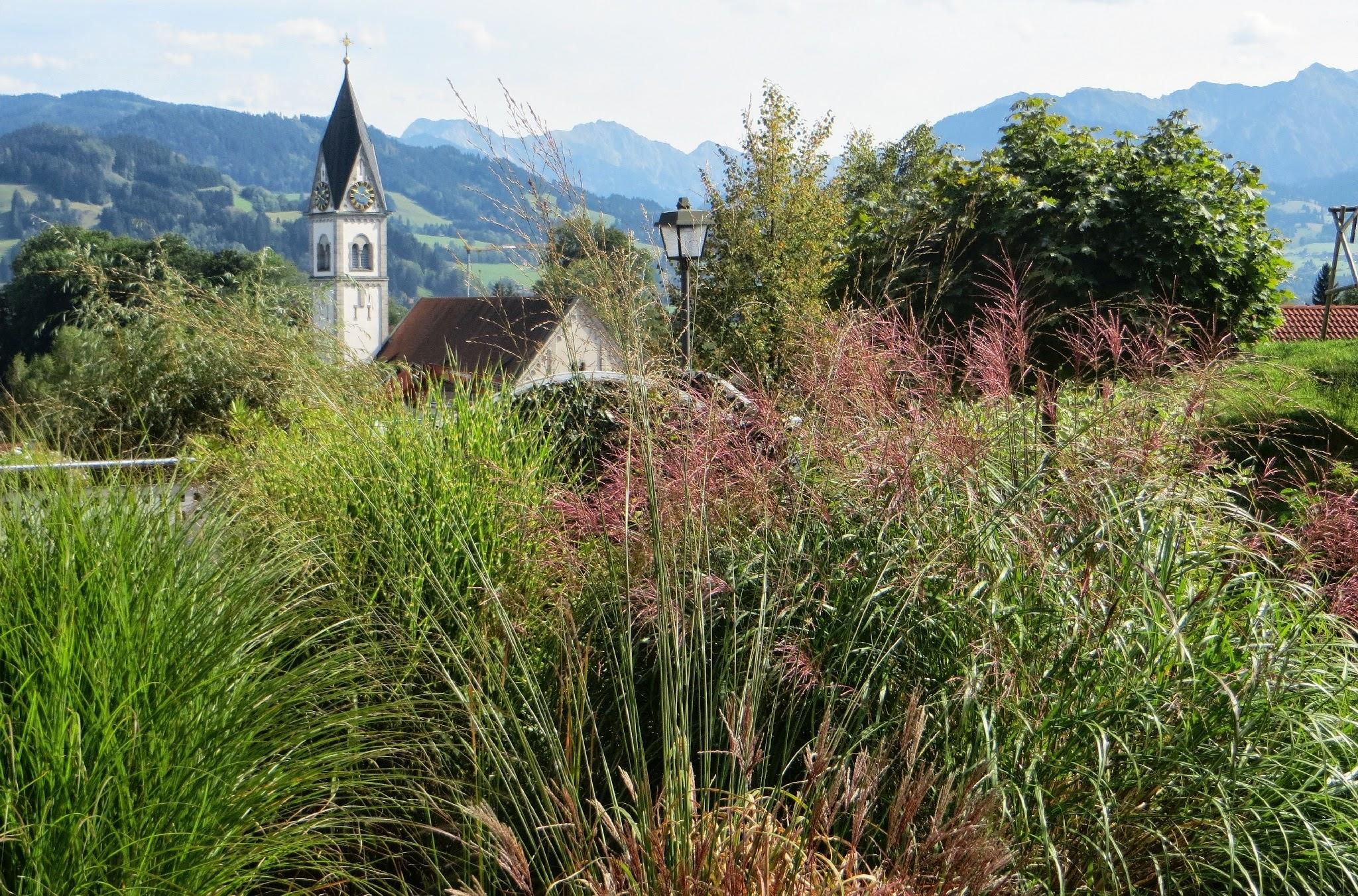 Photo: Am Scheibenbach Motiv 2 Vordergrund Gräser -  Blick zu den Hindelanger Bergen, ganz rechts Rotspitze Spazieren: https://pagewizz.com/blaichach-spazieren-im-allgau-35033/