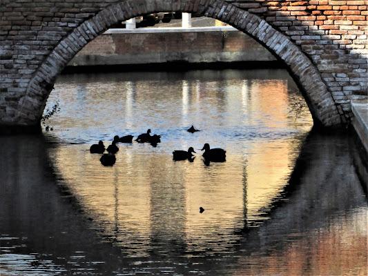 Il ponte-etnop li di paolomole