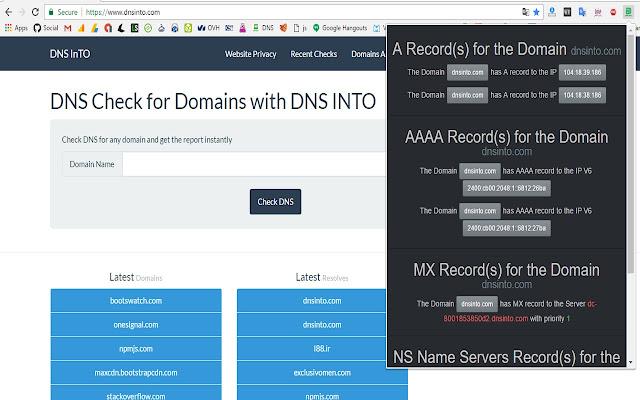 DNS Into