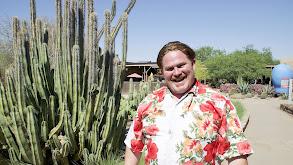 Phoenix, AZ thumbnail