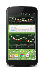 Meteogram Pro Weather Forecast screenshot 6