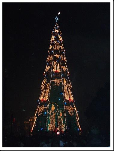 Porto Natal 50