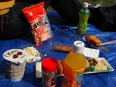 hanami 花見 parque 公園 park comida food 食べ物