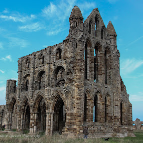Whitby Abbey by Andrew Lancaster - Buildings & Architecture Places of Worship ( religion, god, church, archetecture, brick, arches, christ, stone, whitby, dog, people, worship, abbey )