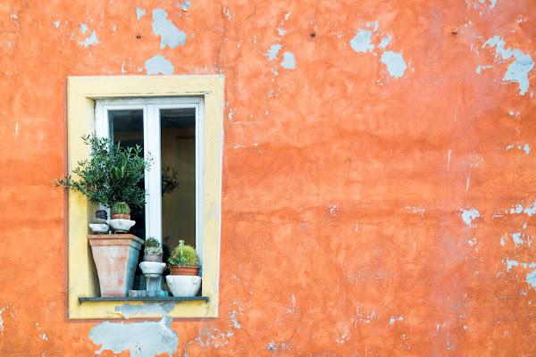 Window di fasele72