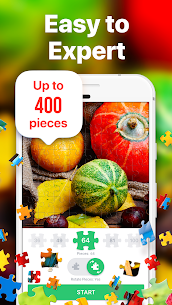 Jigsaw Puzzles – Puzzle Game 3