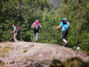Photo: on rentre dans la Forêt mixte
