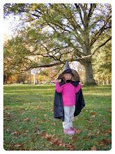 Photo: A la rencontre d'une sorcière au fond des bois en 2011