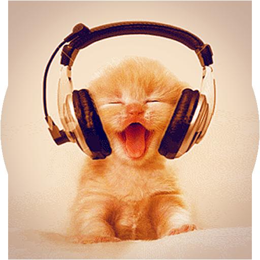 Kitty Music Live Wallpaper