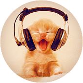 Kitty Music Live Wallpaper