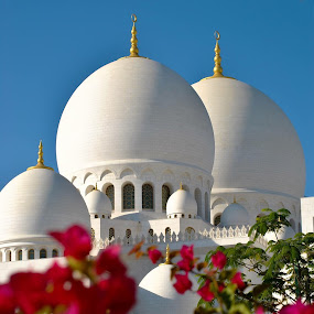 Grand Mosque, Abu Dhabi by Gopichand Kokirkar - Buildings & Architecture Places of Worship ( sigma, uae, abu dhabi, architecture, landscape, nikon )