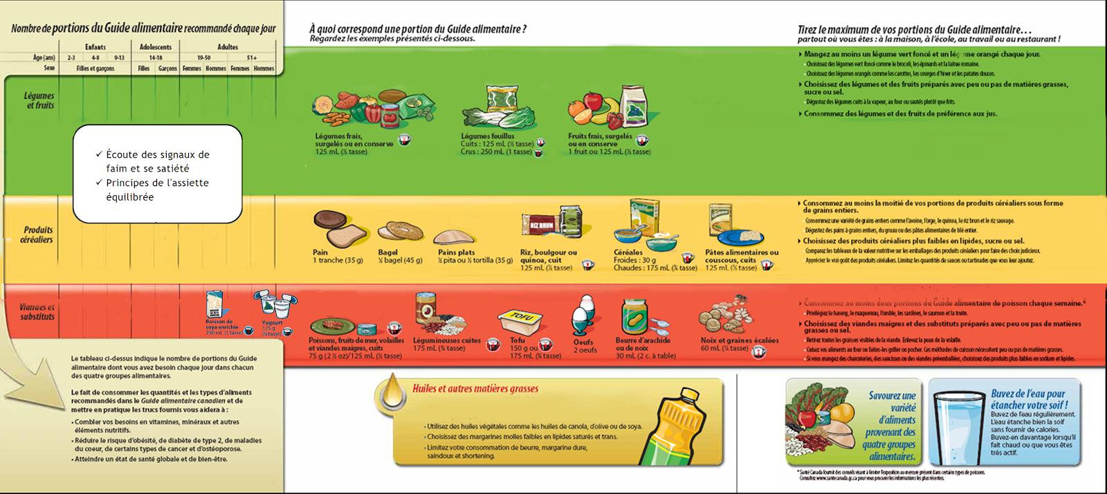 J Avais Raison Ou Non Mes Hypotheses Sur Le Guide Alimentaire Canadien 2019 Cynthia Marcotte