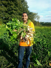Photo: Brunel NHSF students helping to harvest food.