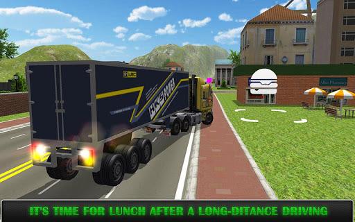 Heavy Truck Simulator Pro  captures d'u00e9cran 2