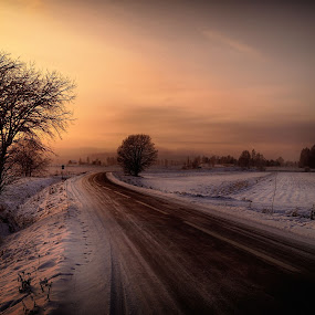 The road by Micke Lindblå - Landscapes Prairies, Meadows & Fields ( #road )