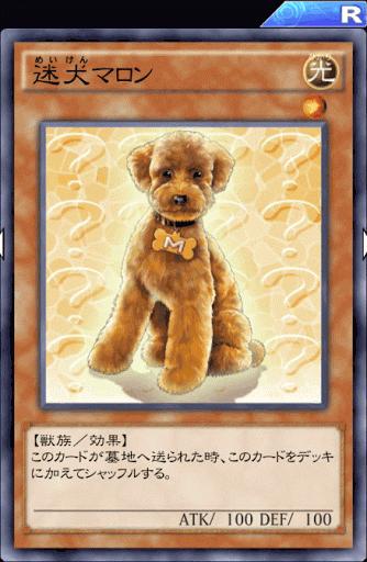迷犬マロン