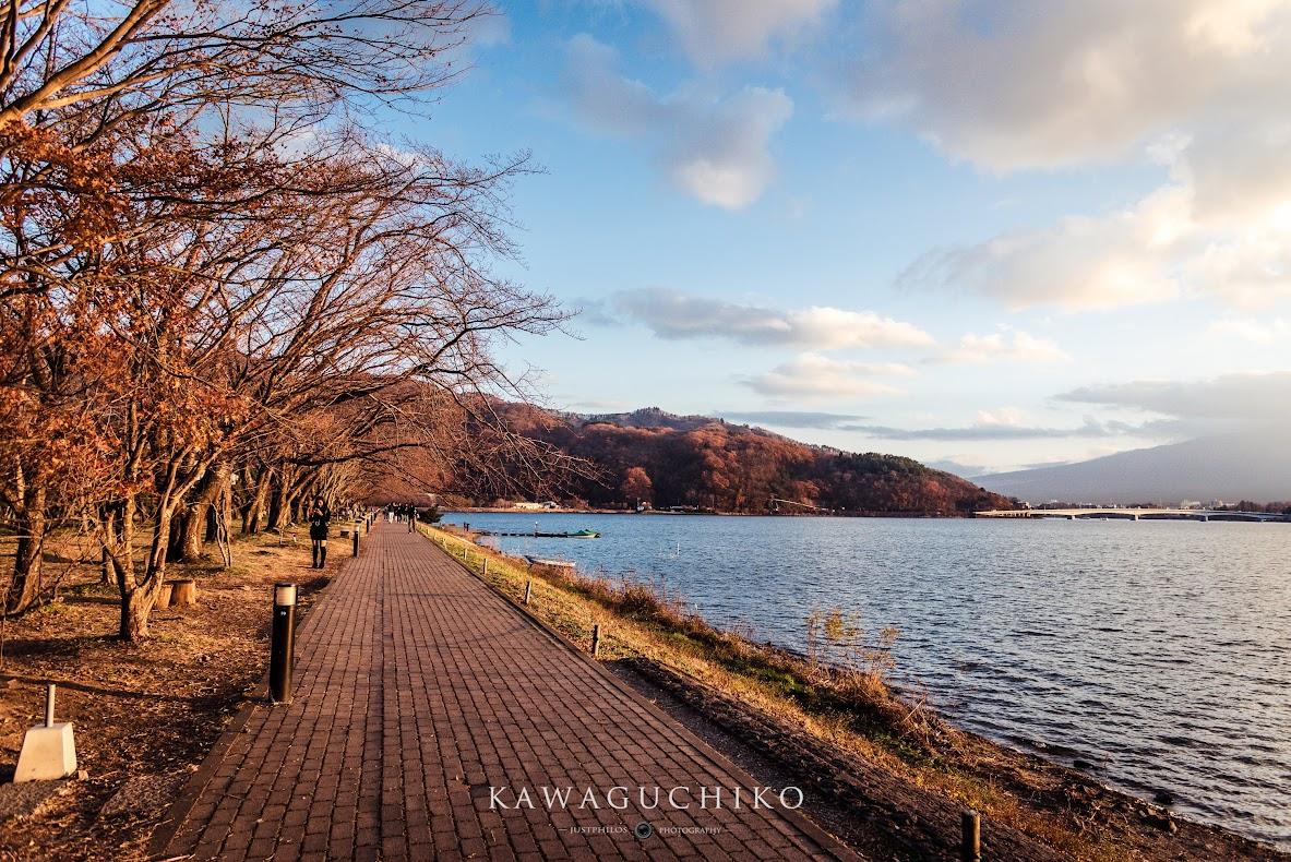 漫步在河口湖北岸步道可以悠閒著欣賞富士山的日落時刻。