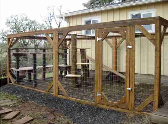 Diy Outdoor Cat Enclosure Android Apps On Google Play
