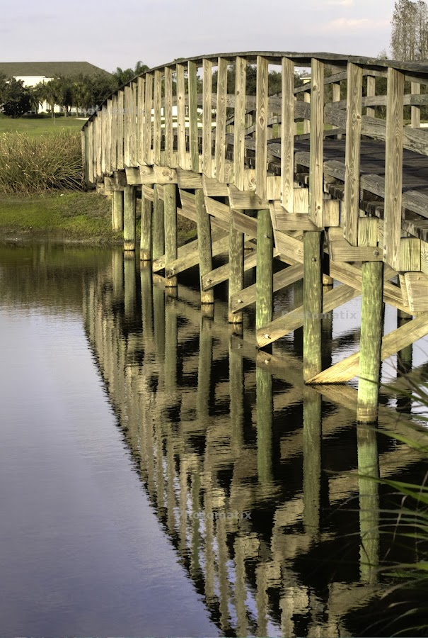 Crossings by Humberto Reyno - Buildings & Architecture Bridges & Suspended Structures ( water, structires, wood, lines, bridge )