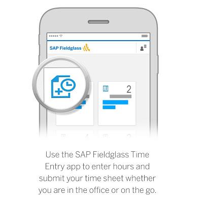 SAP Fieldglass Time Entry - screenshot