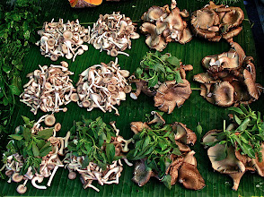 Photo: neat piles of mushrooms and herbs for sale at the market