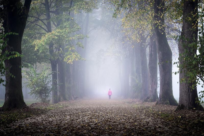 La selva oscura... di Sara_V_98