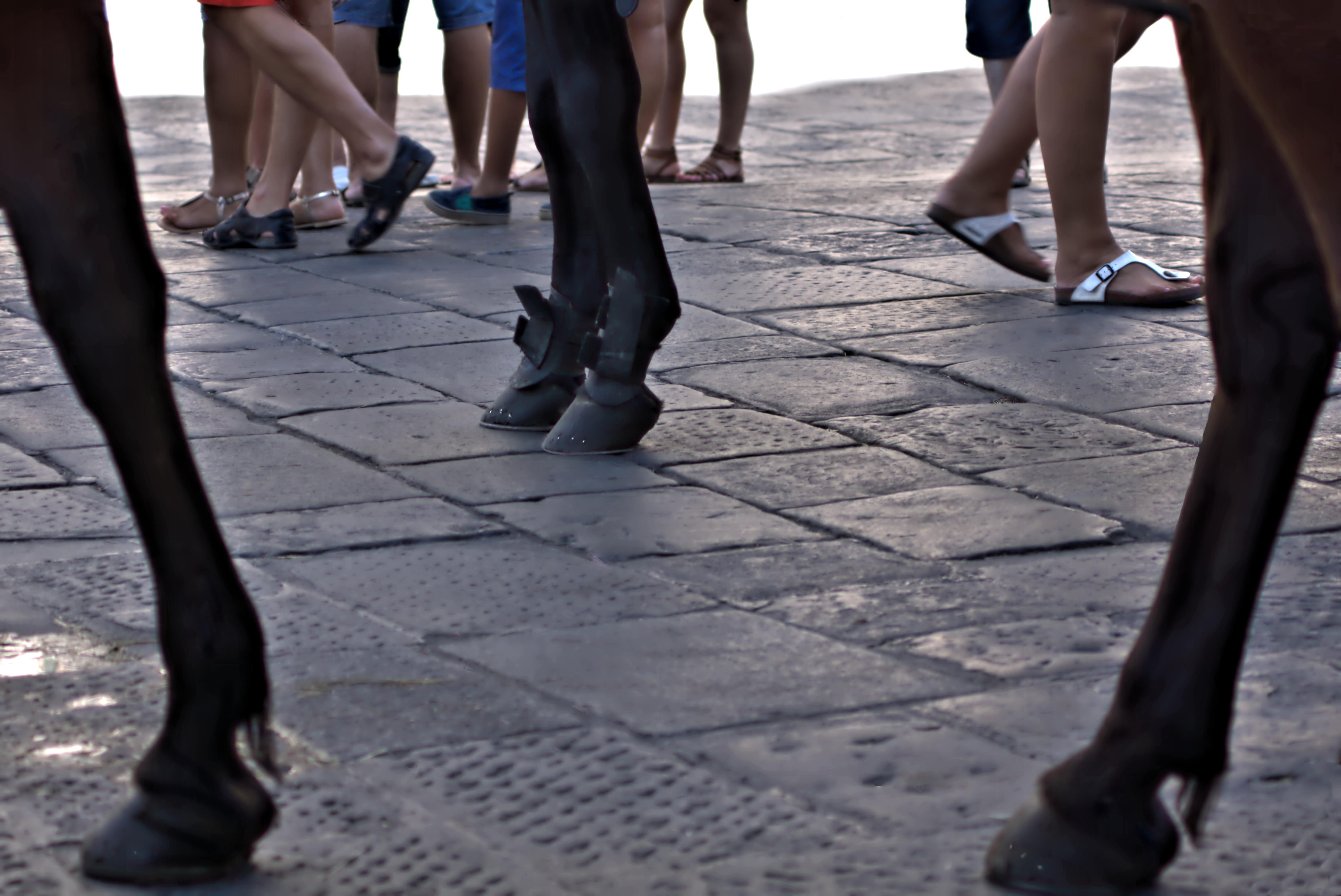 gambe di ruggeri alessandro