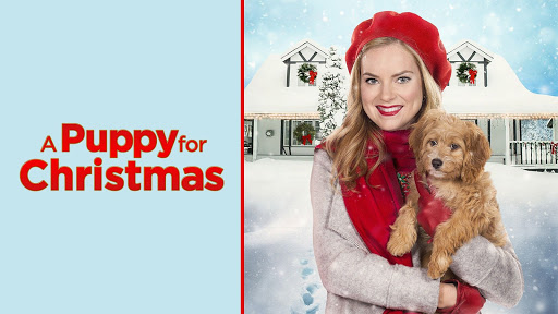 A Very Country Christmas Homecoming (2020)   Trailer   Greyston