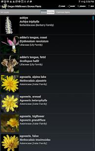 Oregon Wildflowers- screenshot thumbnail
