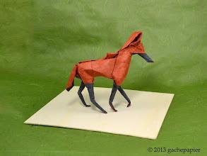 Photo: Maned Wolf - lokta square, 50cm