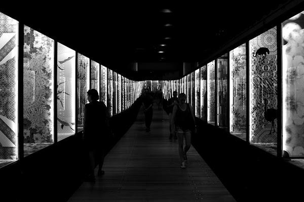 Al museo di Luca Mandelli