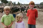 Kids at the Masaai Ostrich Farm