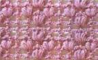 image013 Tığ ile yapılan örgü teknikleri
