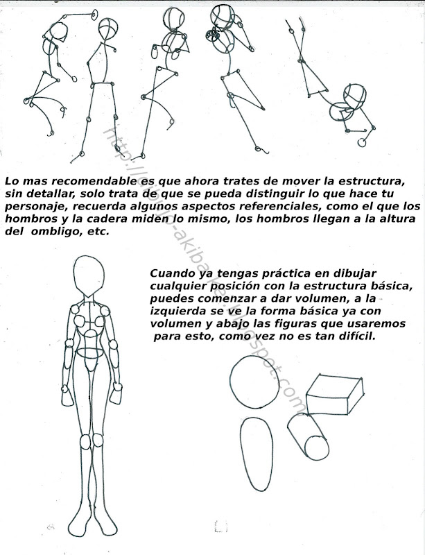 Animotion: Anatomia femenina manga