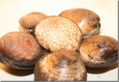 musslor-1