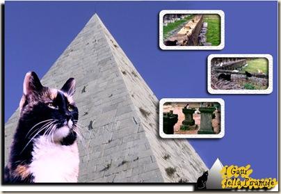 Gatti-Piramide