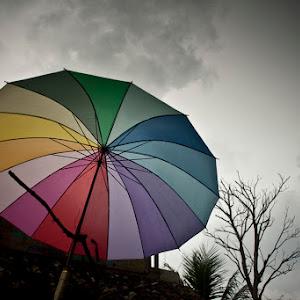 the umbrella.jpg