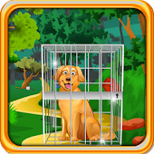 Golden Retriever Dog Escape